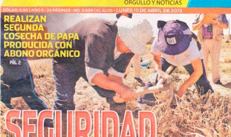 cosecha de papa con abono orgánico